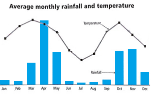 Average monthly rainfall and temperature