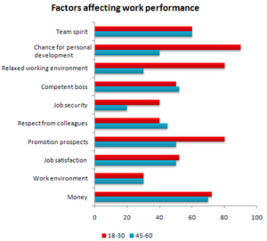 Bar Graph - Factors affecting their work performance