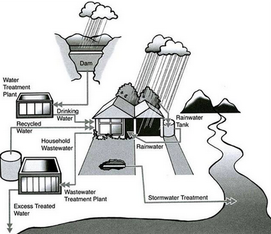 How rainwater is reused for domestic purposes