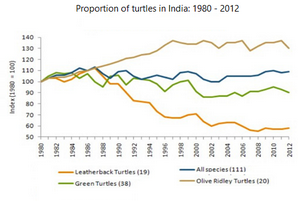 Line Graph - Population of turtles in India from 1980 to 2012
